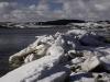 Insel Rügen im Winter am Zicker