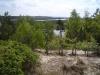 Blick von der Hohen Düne bei Prerow